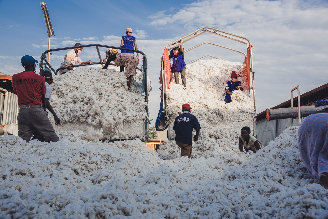 Documenting the cotton supply chain form the farm to the factory